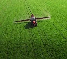Гербициды оптом для сельхоз культур в ДНР от компании РОСТ