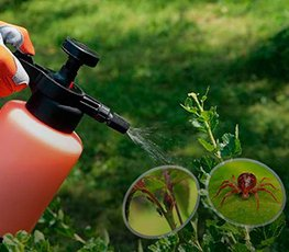 Инсектициды Оптом в ДНР